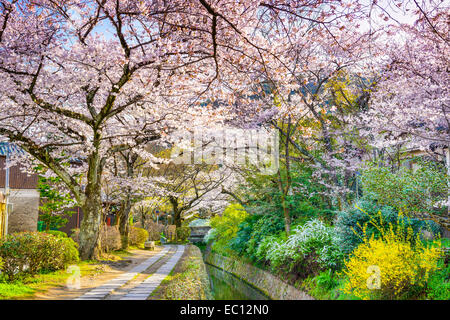 Kyoto, Japan at Philosopher's Way in the Springtime. - Stock Photo