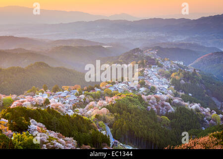Yoshinoyama, Nara, Japan during the spring season. - Stock Photo
