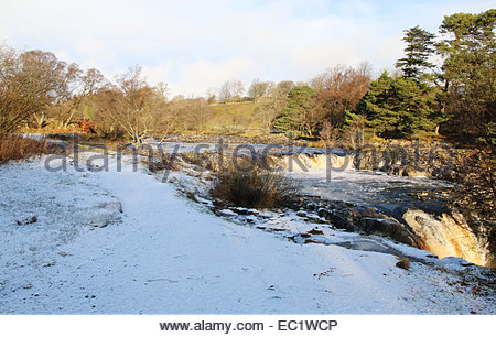 Low Force Waterfall near Middleton-in-Teesdale, Co Durham, UK 8th December 2014. A cold and bright day in Upper - Stock Photo