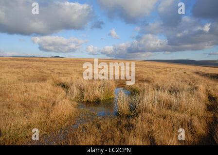 Open moorland in Dartmoor National Park, Devon, England - Stock Photo