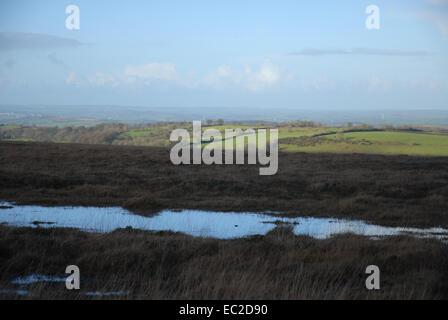 Blanket bog on Dartmoor National Park, looking to green hills and distant horizon, Devon, England - Stock Photo