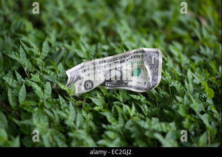 crumpled one dollar bill lying on grass - Stock Photo