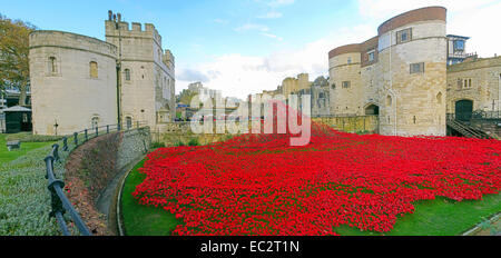 Panorama of Blood Swept Lands and Seas of Red poppies, at The Tower of London, England UK - Stock Photo