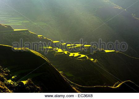 Rice terraces in Luzon's Cordillera Mountains - Stock Photo