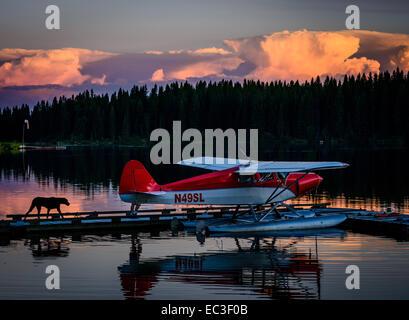 Floatplane and dog in front of thunderheads at Stillwater Lake near Whitefish, Montana. - Stock Photo