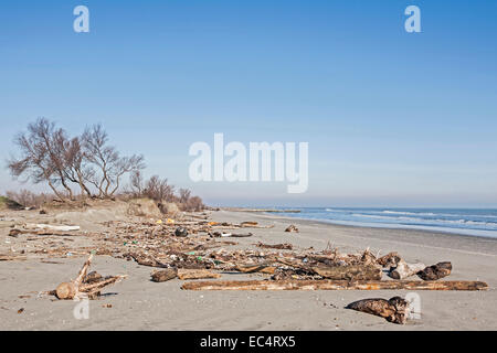 Flotsam on the Adriatic Coast in Early Spring - Stock Photo