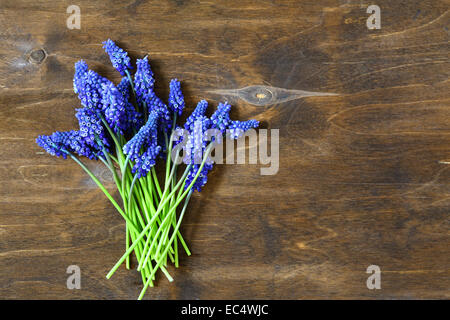Hyacinth on wooden background, flowers. Top view - Stock Photo