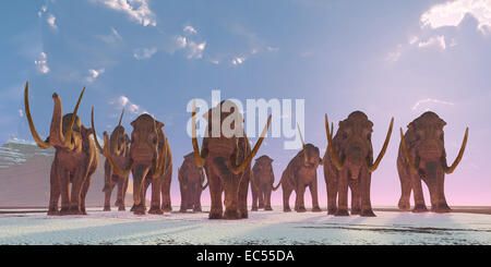 As winter sets in a herd of Columbian Mammoths migrate to a warmer climate. - Stock Photo