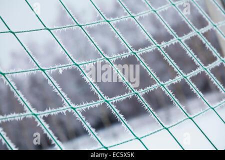 freezing, Frozen soccer net, Eiszacken, Frosty, minus, freezing cold - Stock Photo