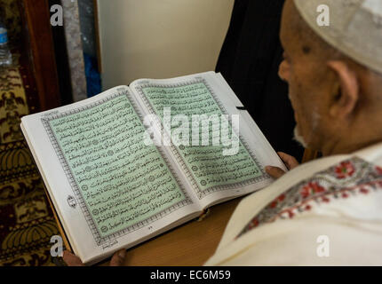 An Arab American Muslim reads the Koran at the Islamic Center of Bay Ridge in Brooklyn New York during the month - Stock Photo