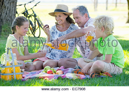Children and grandparents having a picnic in countryside - Stock Photo