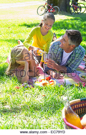 Family having a picnic in countryside - Stock Photo