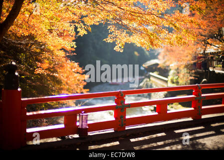 Autumnal colors of Maple leaves in the Takao valley, near Kyoto, Japan, - Stock Photo
