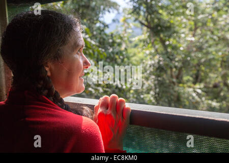 Woman using viewing platform in upper part of rainforest canopy, Gunung Mulu National Park, Malaysia - Stock Photo