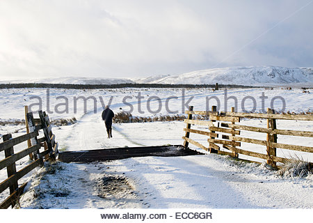 Off the Alston Road near Harwood, Middleton-in-Teesdale, Co Durham UK 11th December 2014. Beyond the cattle grid - Stock Photo