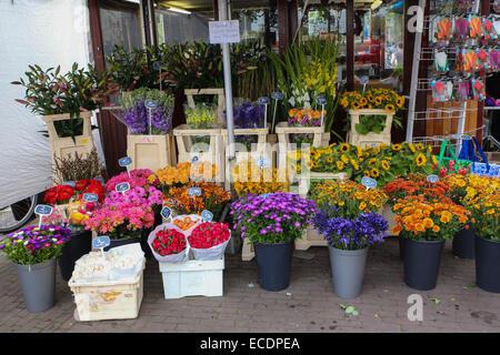 amsterdam flower shop - Stock Photo