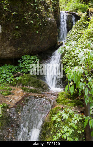 View of waterfall in annapurna conservation area, Nepal - Stock Photo