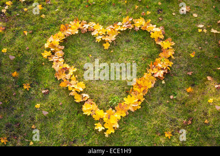 Yellow autumn leaves heart shape grass from above - Stock Photo