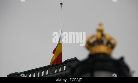 Brussels. 12th Dec, 2014. The Belgian flag is flown at half-mast at the Royal Palace of Belgium in Brussels, Dec. 12, 2014. A national funeral was held Friday for Belgium's Queen Fabiola, widow of King Baudouin and queen between 1960 and 1993, who died at the age of 86 on Dec. 5. Credit:  Zhou Lei/Xinhua/Alamy Live News