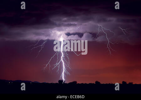 Lightning striking a tree, Arlington, Arizona, america, USA - Stock Photo