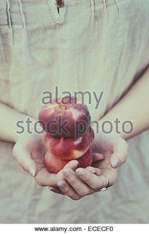 United Kingdom, England, Warwickshire, Stratford-upon-Avon, Woman holding three peaches in both hands - Stock Photo