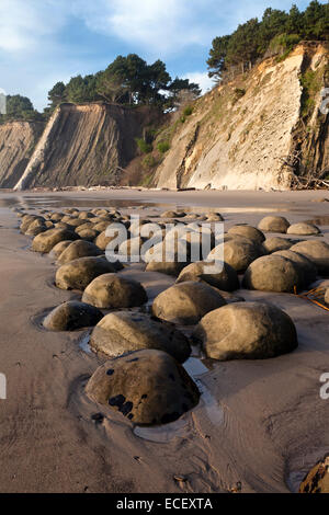 Spherical sandstone concretions on Bowling Ball Beach lie within Schooner Gulch State Beach along California's Mendocino coast.