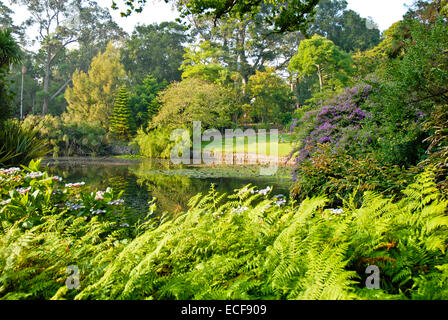 Australian Garden Cranbourne Melbourne Victoria Australia