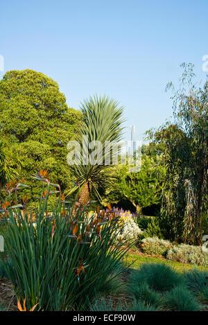 Botanic Gardens Cranbourne Victoria Australia Stock