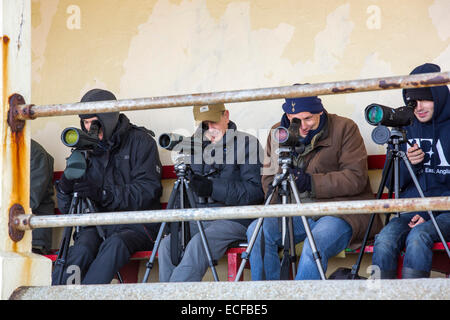 Bird watchers sea watching from a shelter on the seafront in Sheringham, Norfolk, UK. - Stock Photo
