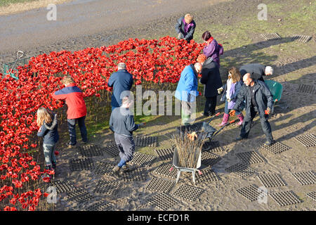 Volunteers helping to remove Ceramic Poppies ('Blood swept lands & seas of red') from moat at Tower of London after - Stock Photo