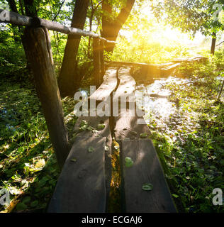 Sun over little wooden bridge in the forest - Stock Photo