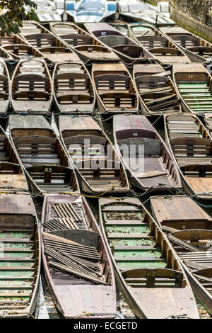 Punts on the River Cherwell, Oxford. Punting is a famous Oxford University activity enjoyed by students and tourists - Stock Photo
