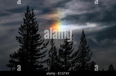 Sun Dog in Yosemite, CA, USA - Stock Photo