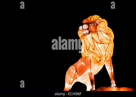 Lion Chinese Lantern at Longleat, Warminster, Wiltshire. England - Stock Photo