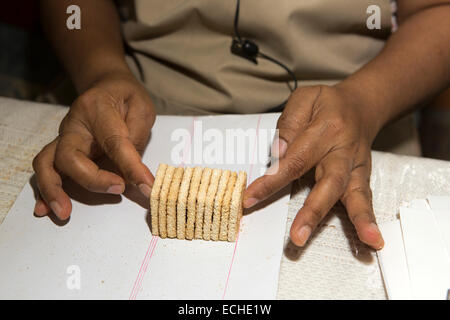Mauritius, Mahebourg, Biscuiterie Rault Manioc Biscuit factory, woman counting biscuits for packing - Stock Photo