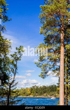 Sweden, Stockholm, Stockholm archipelago is one of the largest in the entire Baltic Sea and includes 30,000 islands, - Stock Photo