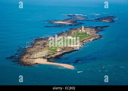 France, Vendee, Ile du Pilier (aerial view) - Stock Photo