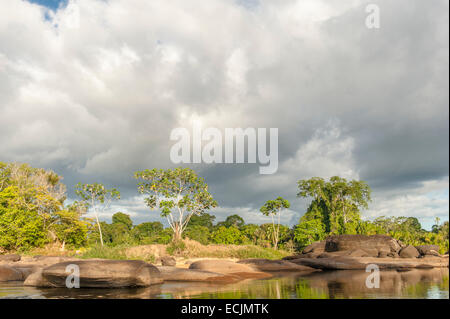 Suriname River landscape with granite rock and unspoilt rain forest in Upper Suriname hear Goejaba - Stock Photo
