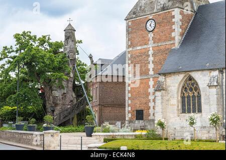 France, Seine Maritime, Allouville Bellefosse, 18th century Saint Quentin church and the 9th century oak - Stock Photo