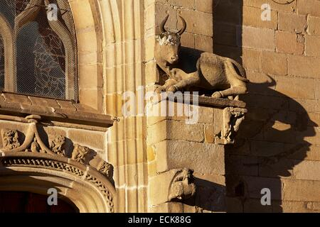 France, Morbihan, Malestroit, Saint Gilles church, Ox Sculpture at rest, attribute of St.Luc, Shadow projecting - Stock Photo