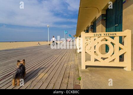 France, Calvados, Deauville, the beach, the boardwalk, names of actors and directors from famous movies, dog (Canis - Stock Photo