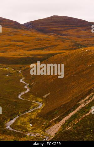 United Kingdom, Scotland, Cairngorms National Park, Cairngorm Mountains, vertical plowland heath and a creek that - Stock Photo
