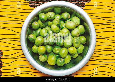 Burkina Faso, Bobo Dioulasso, Toussiana, women's cooperative, shea fruit - Stock Photo