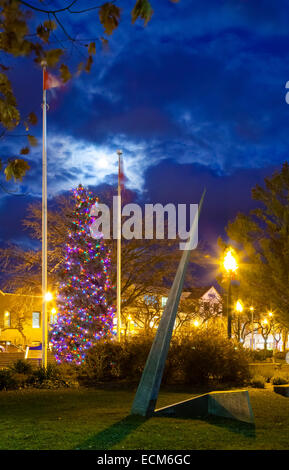 A very large Christmas Tree (Blue Spruce) covered in lights with an art sculpture in the foreground. Oakville, Ontario, - Stock Photo