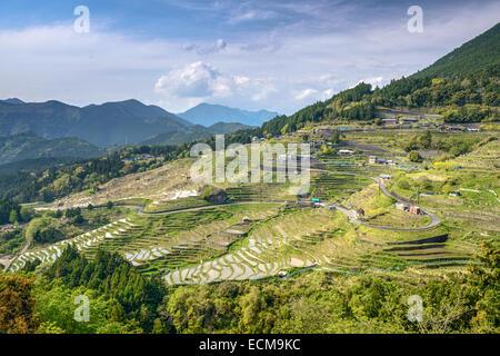 Rice terraces at Maruyama Senmaida in Kumano, Mie Prefecture, Japan. - Stock Photo