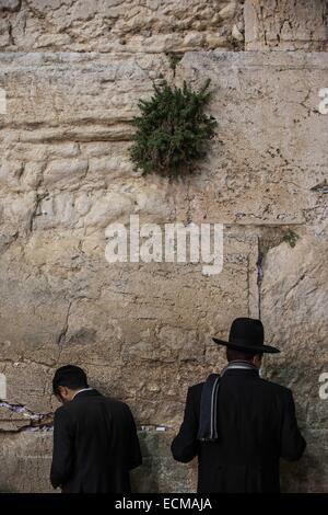 (141217) -- JERUSALEM, Dec. 17, 2014 (Xinhua) -- Ultra-Orthodox Jewish men pray to mark Hanukkah at the Western - Stock Photo