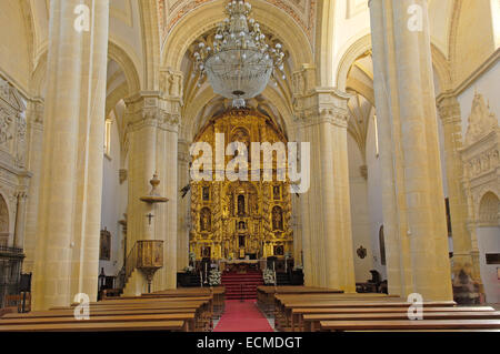 Cathedral, Baeza, Jaen province, Andalusia, Spain, Europe - Stock Photo