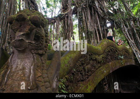The view from The Holy Bathing Temple across the Dragon Bridge and through the Banyon Tree in Ubud's Monkey Forest. - Stock Photo