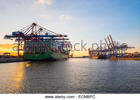 Cargo ships being loaded at Eurokai and Burchardkai in Hamburg Harbor at sunset, Waltershofer Hafen, Hamburg, Germany - Stock Photo
