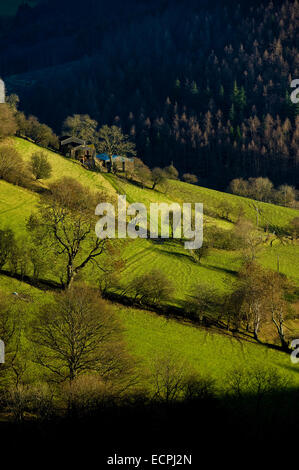 Farms and fields on the Horseshoe pass near Llangollen, Wales - Stock Photo